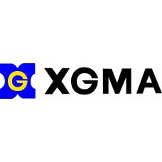 Двигатель в сборе для XGMA
