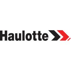 Двигатель в сборе для Haulotte Group